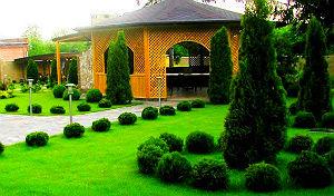 Сады Ривьеры, заказ декоративных растений в Одессе